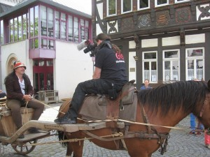 Lich1_Pferd